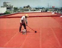 Biocont Construcción y Mantenimiento SAS de CV Playa del Carmen