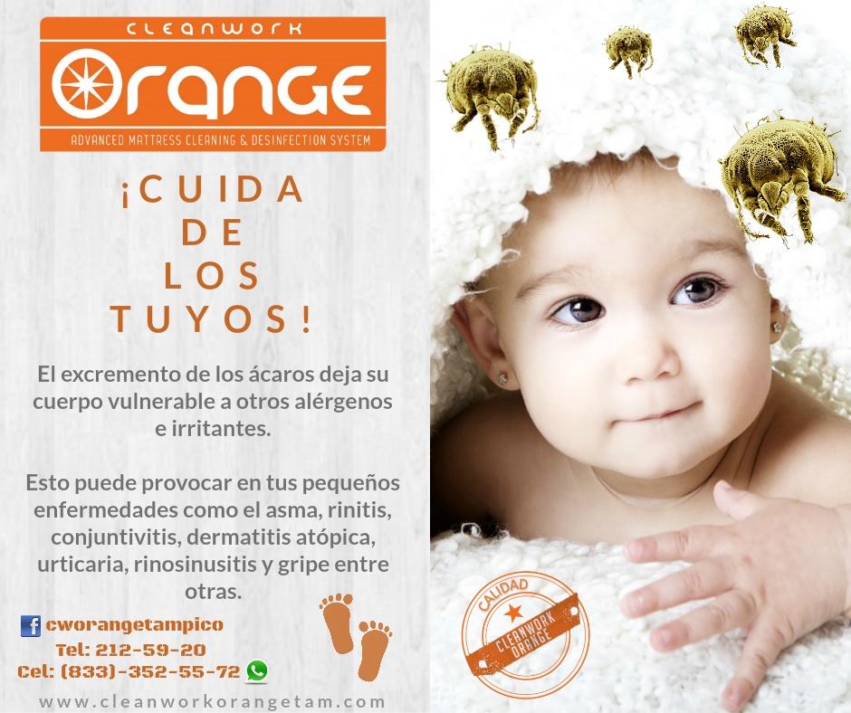 Foto de Cleanwork Orange