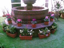 Jardinería Alhelí Xochimilco