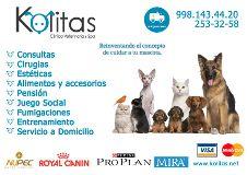 Fotos de KOLITAS CLINICA VETERINARIA Y SPA