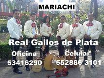 Mariachi Real Gallos de Plata México DF