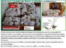 Mi Bello Jardin Plantas Artificiales México DF