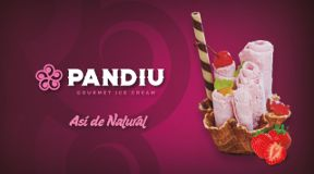 Pandiu-Helados gourmet Oaxaca
