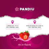 Fotos de Pandiu-Helados gourmet