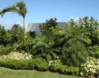 Foto de Plants R Us