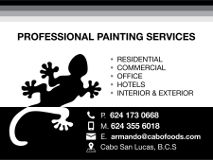 Professional Painting Services Cabo San Lucas