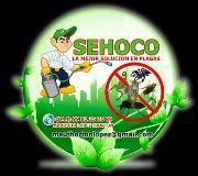 Foto de SEHOCO SERVICIOS PROFECIONALES EN CONTROL DE PLAGAS