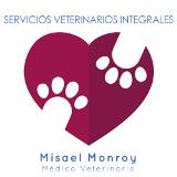 Servicios Veterinarios Integrales Pachuca