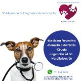 Fotos de Servicios Veterinarios Integrales