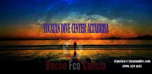 Yucatán Dive Center Altabrisa Mérida