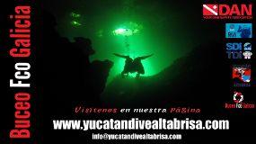 Foto de Yucatán Dive Center Altabrisa